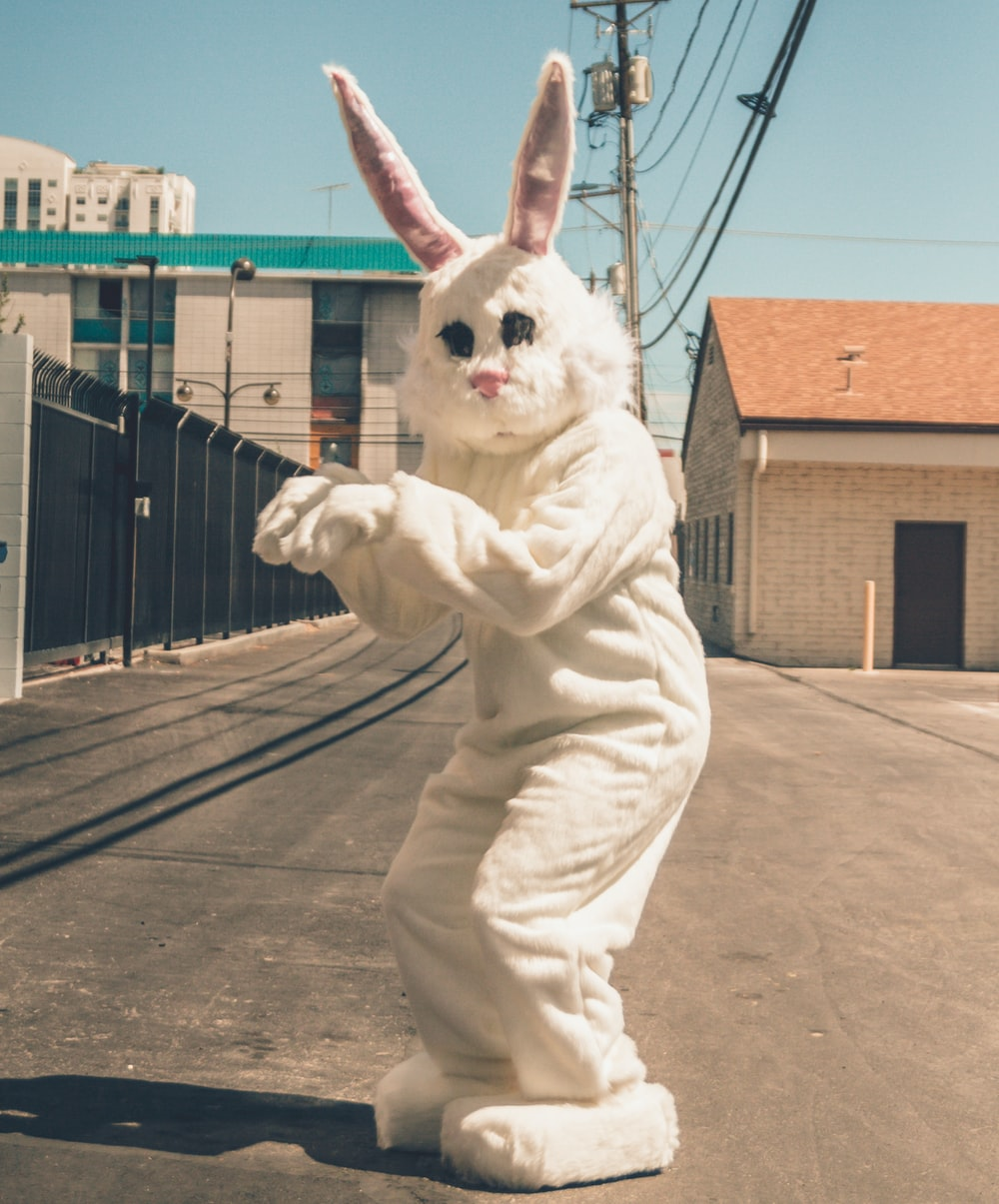 person wearing bunny mascot