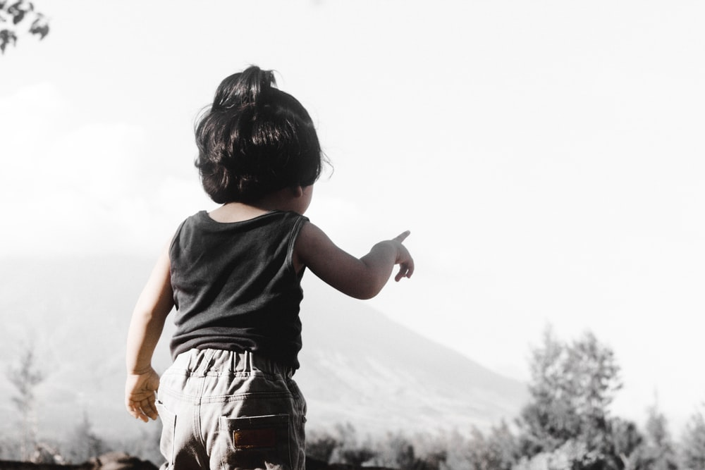 toddler pointing tree