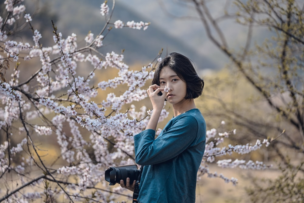 woman smelling cherry blossoms flower during daytime