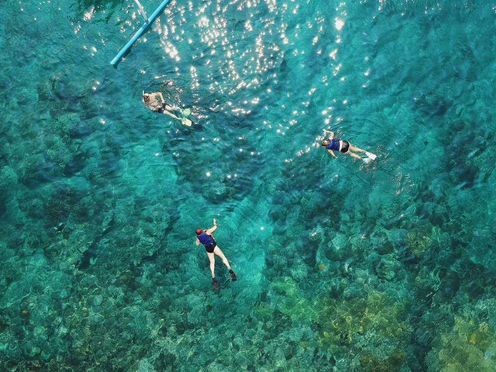 three people swimming and snorkeling in sea