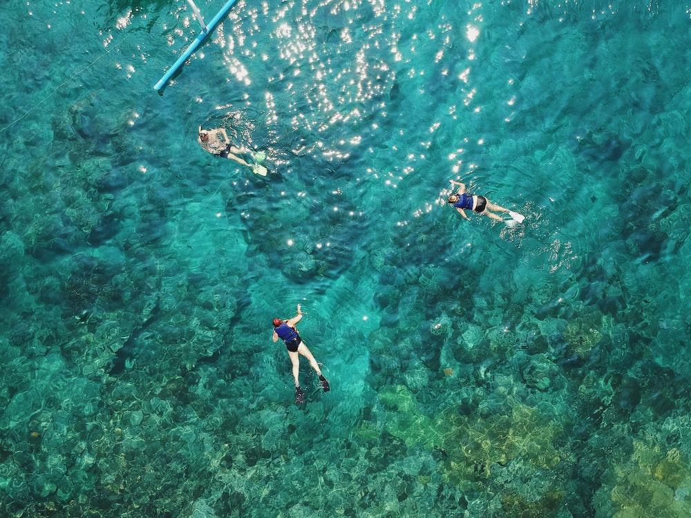 three people swimming in sea