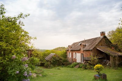 brown wooden house near at garden cottage zoom background