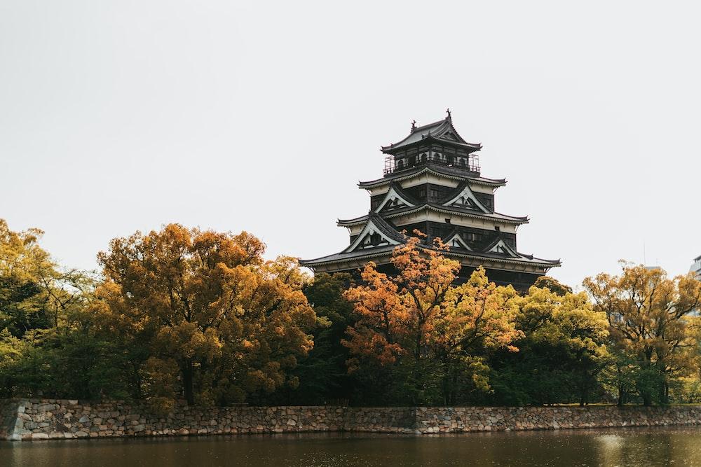 gray and white pagoda