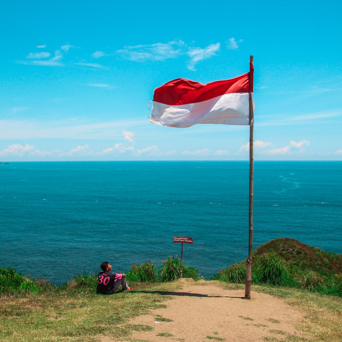 red and white flag beside beach