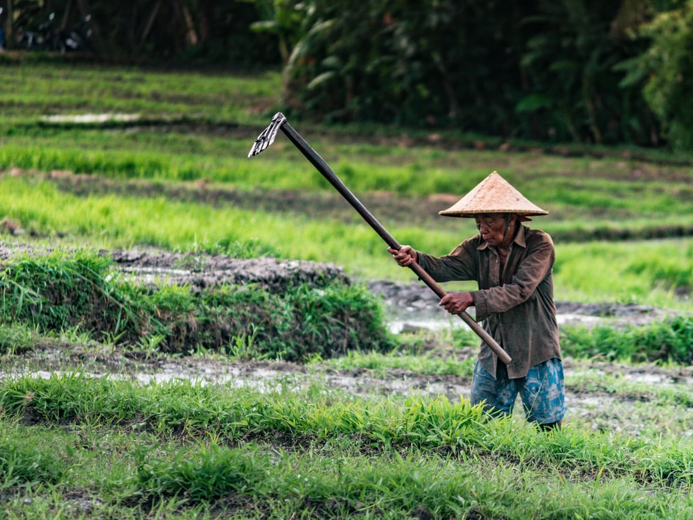man wearing brown sunhat holding rake