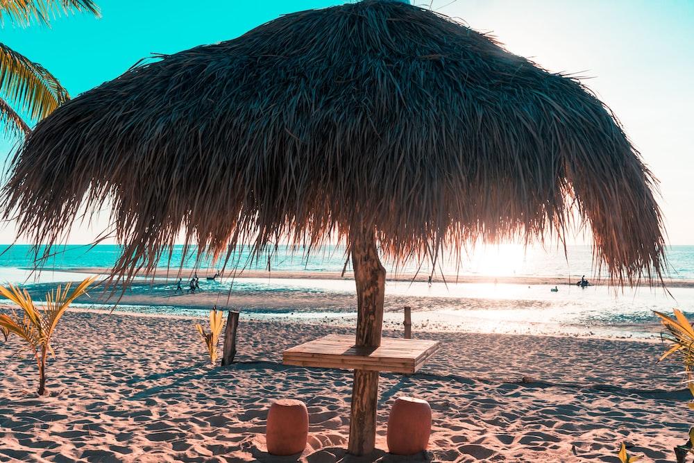 brown nipa tent on seashore during daytime