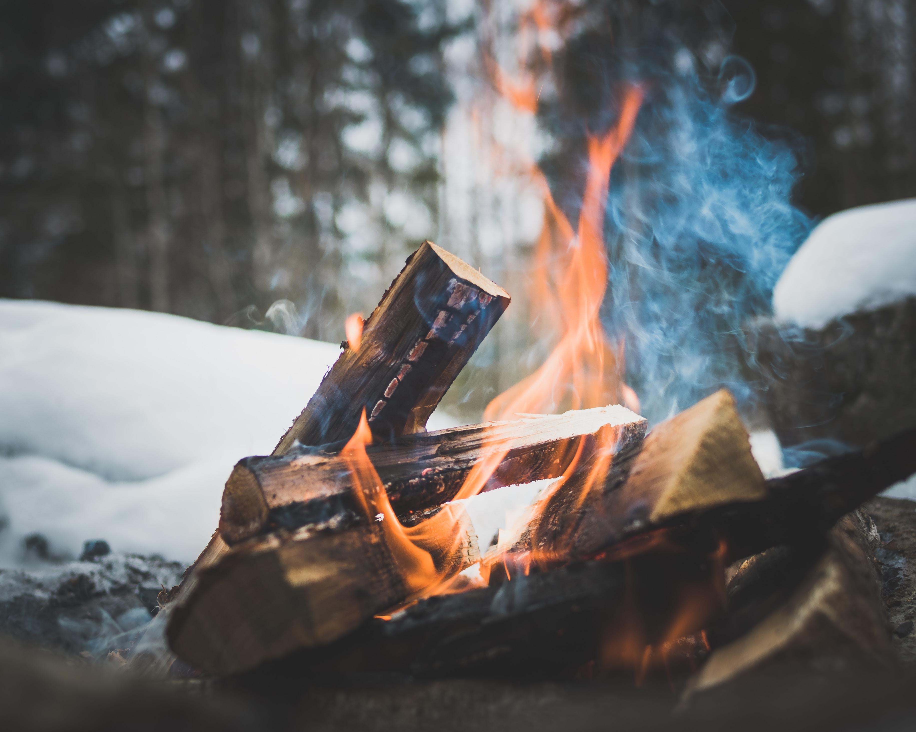 firewood on flame