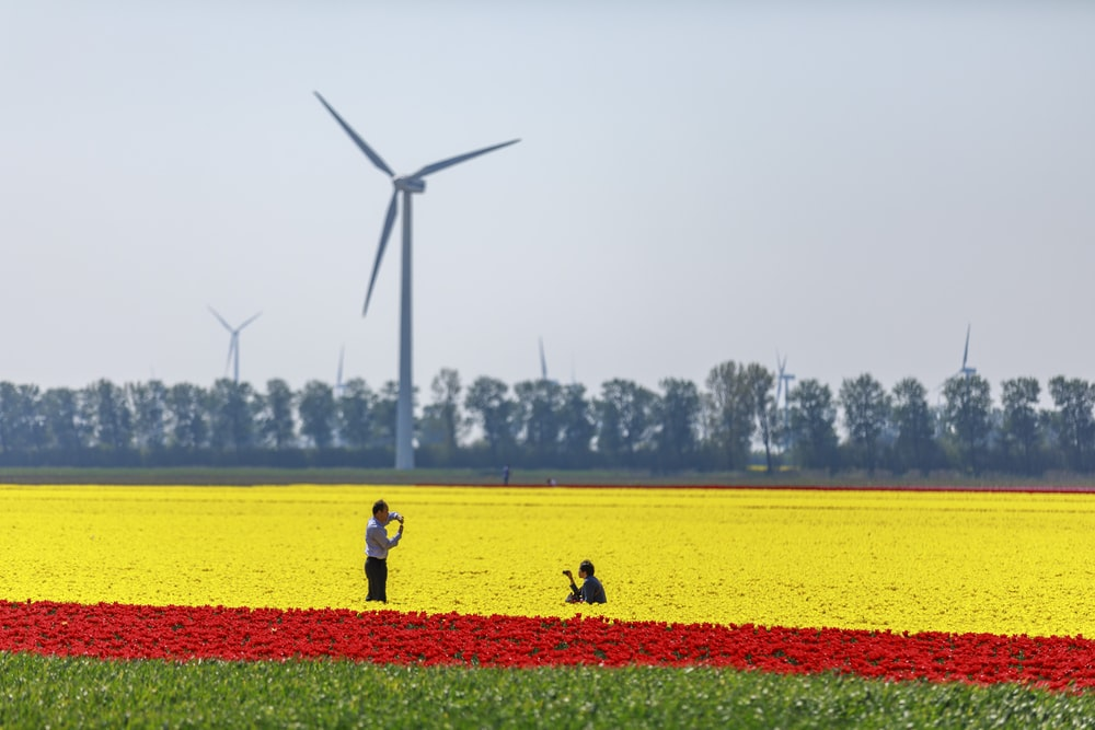 two person standing near wind mill