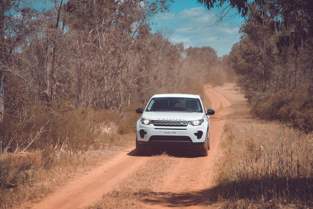 white Land Rover Ranger Rover on road near trees