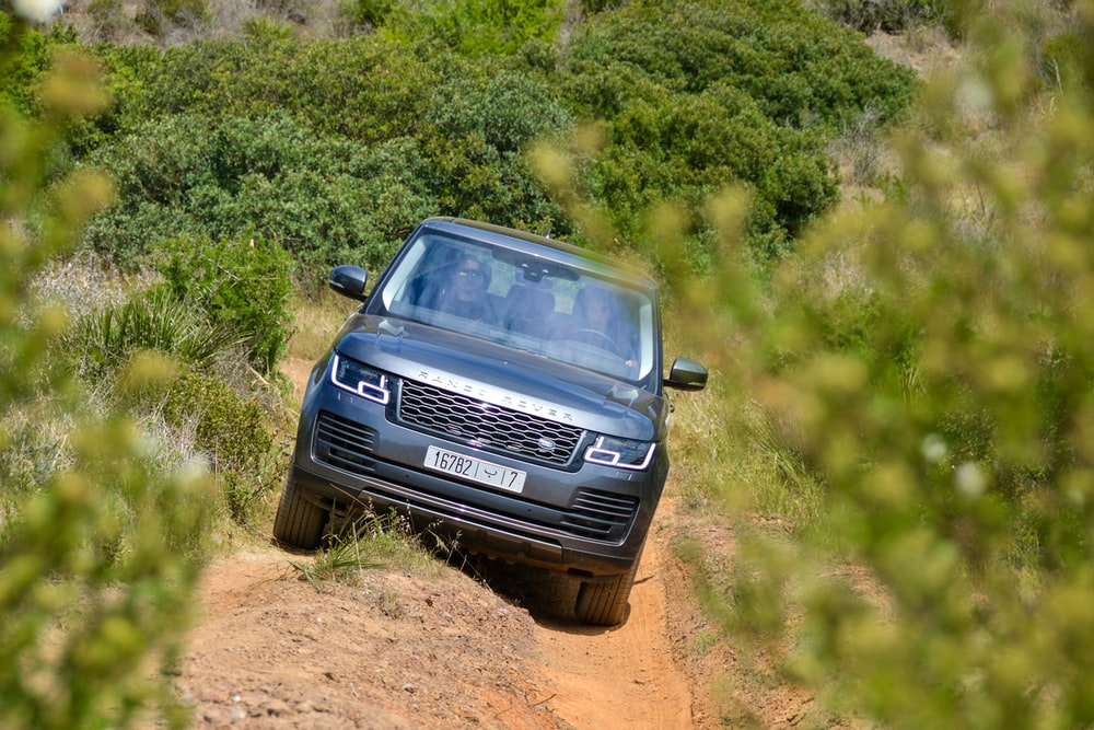 gray Land Rover Range Rover running on trails