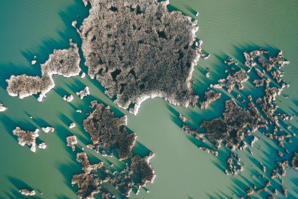 map digital wallpaper