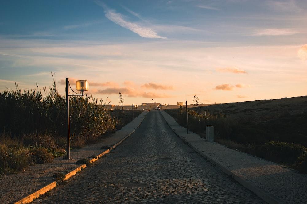 concrete road near grass field