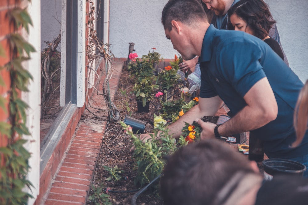 shallow focus photo of people looking at plants during daytime