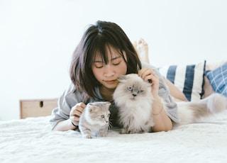 woman lying beside two kittens