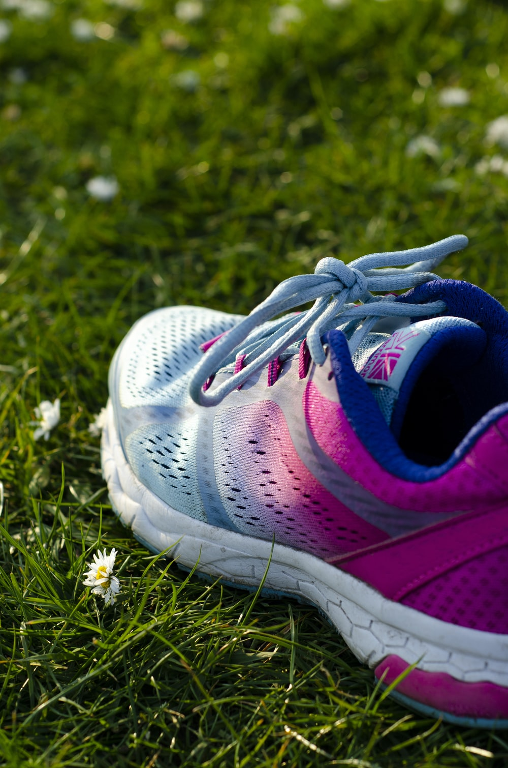close up photo of blue and pink running shoe on green grass