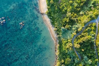 bird's eye view of beach line vietnam zoom background