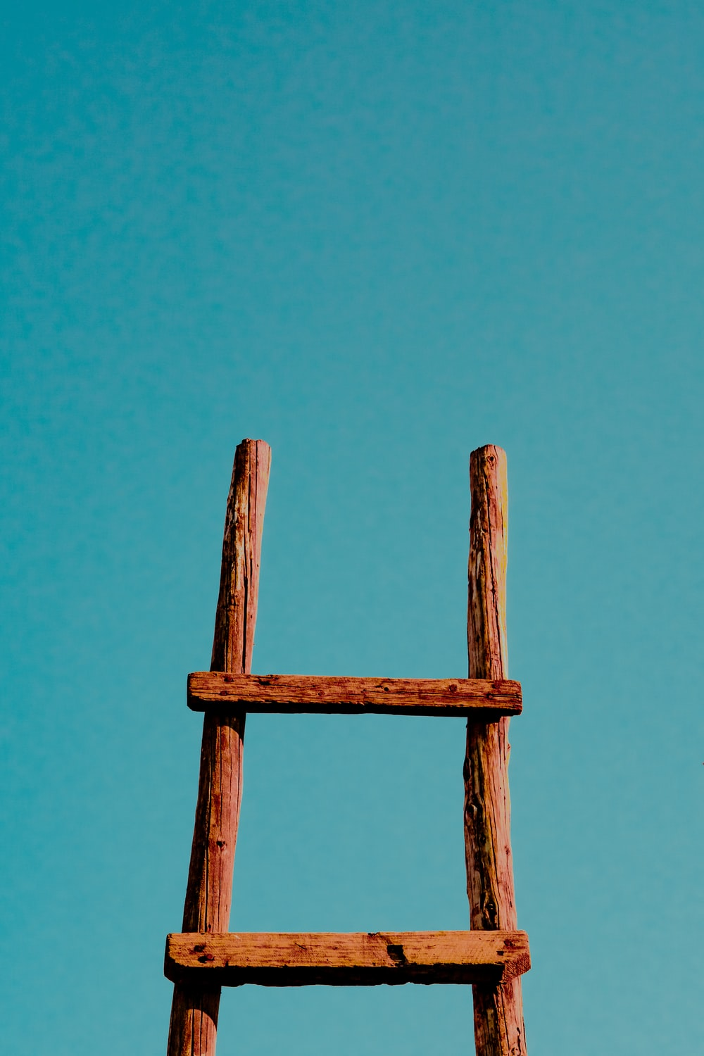 brown ladder