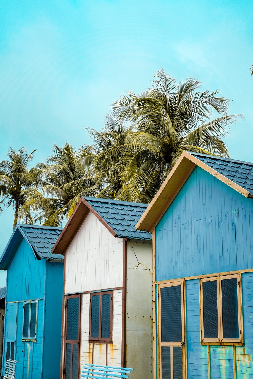 blue and white wooden houses