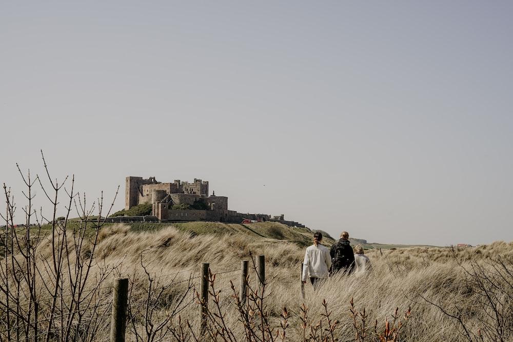 people walking on brown grasses during daytime