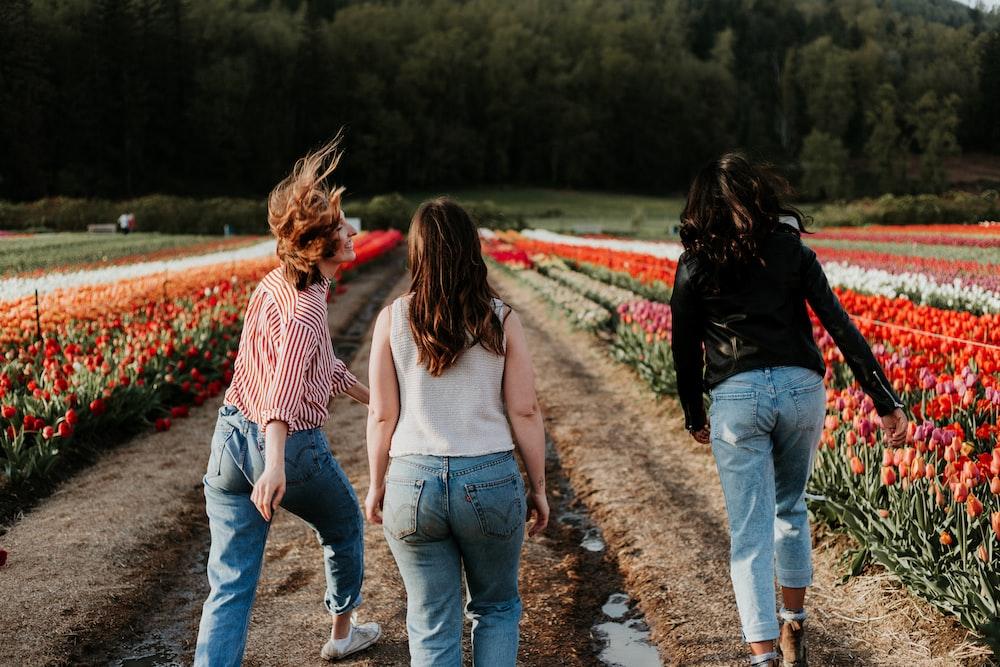 thee women walking between orange flower field