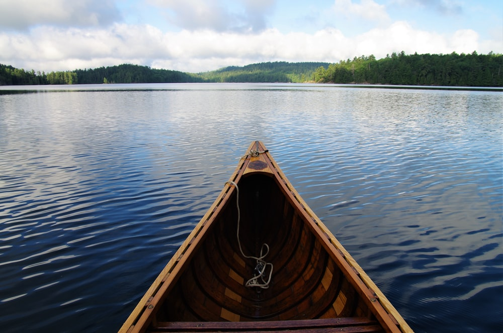 brown boat on blue body of water in front of green trees
