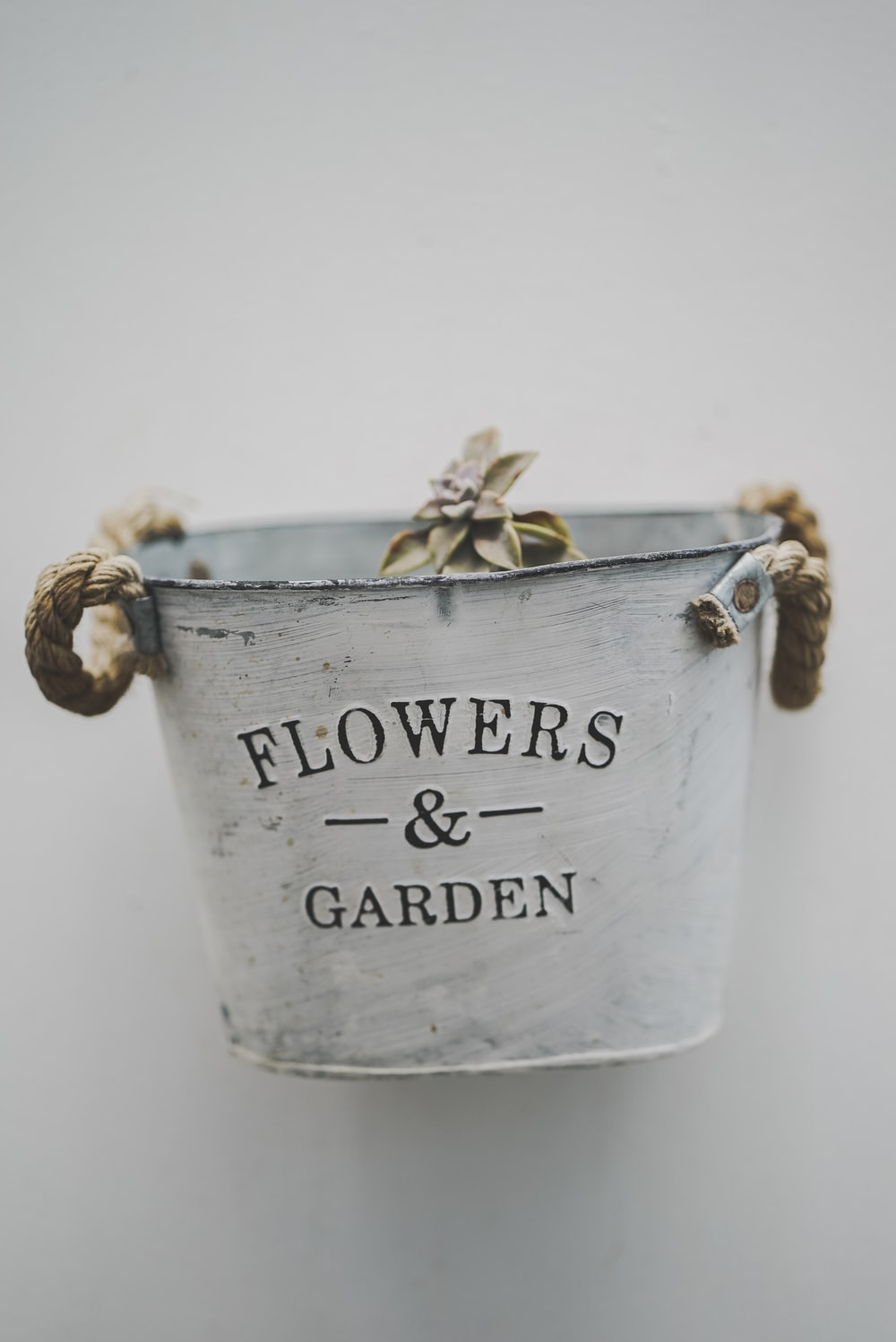 white and brown Flowers And Garden tin bucket