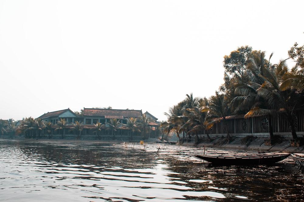 boat on shore near coconut trees