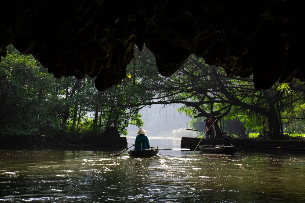 person sitting on boat surrounded with trees