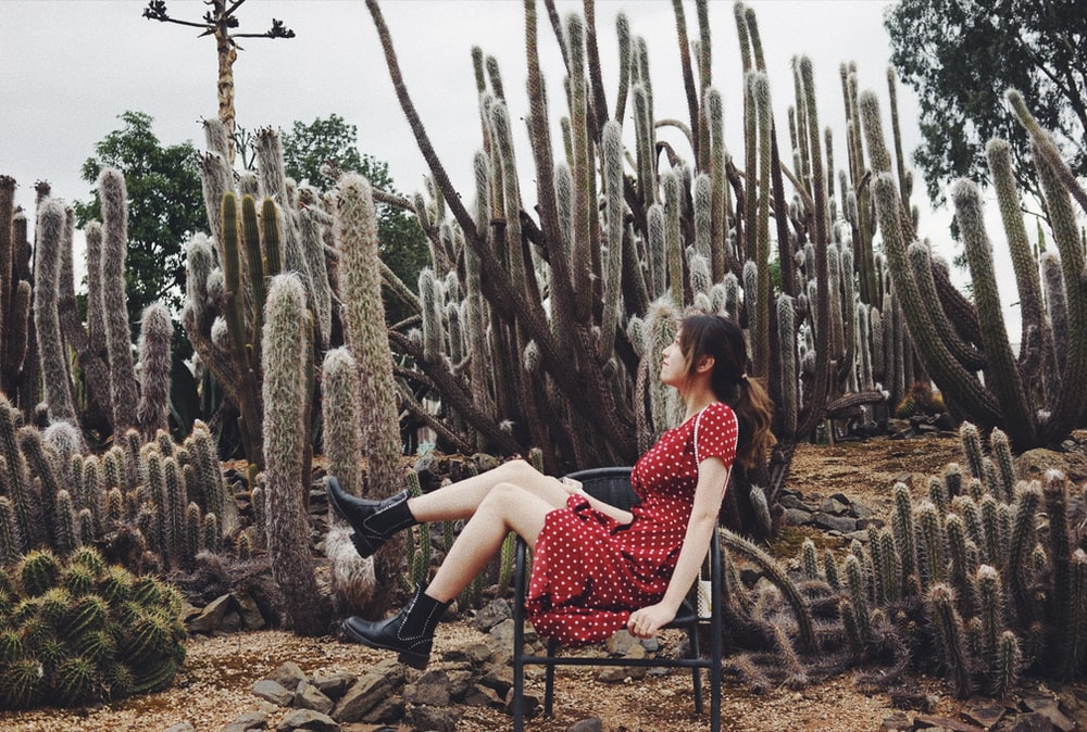 woman sitting near the cactus photography