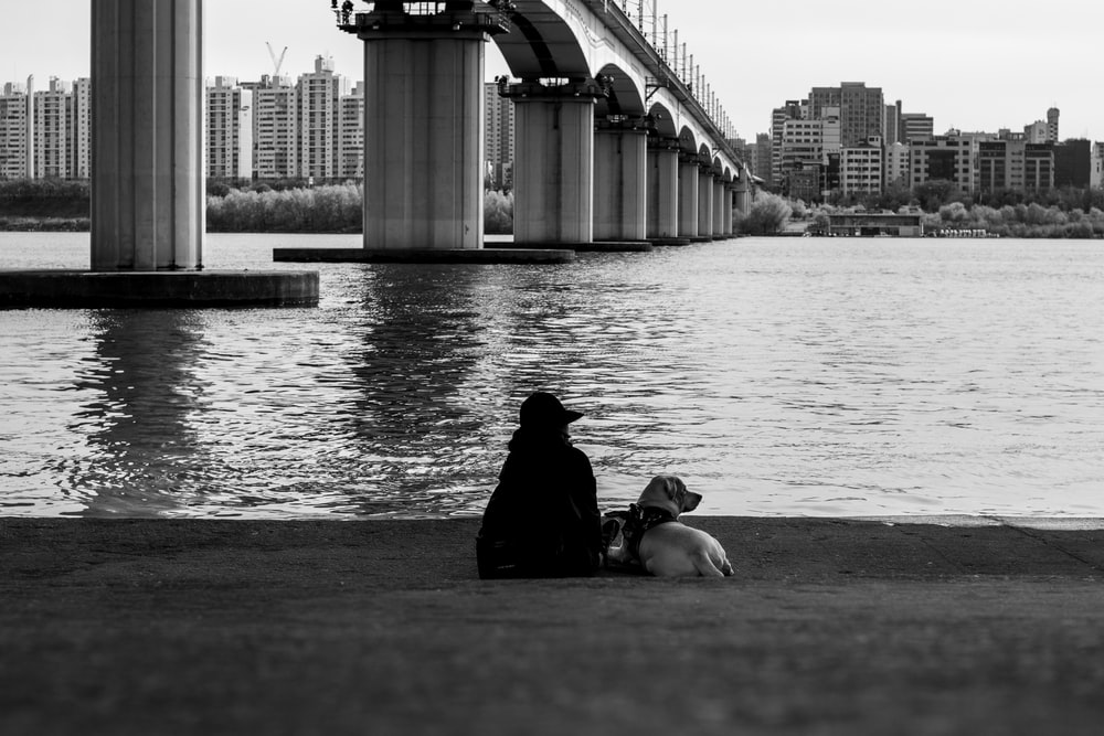 person sitting beside dog near body of water
