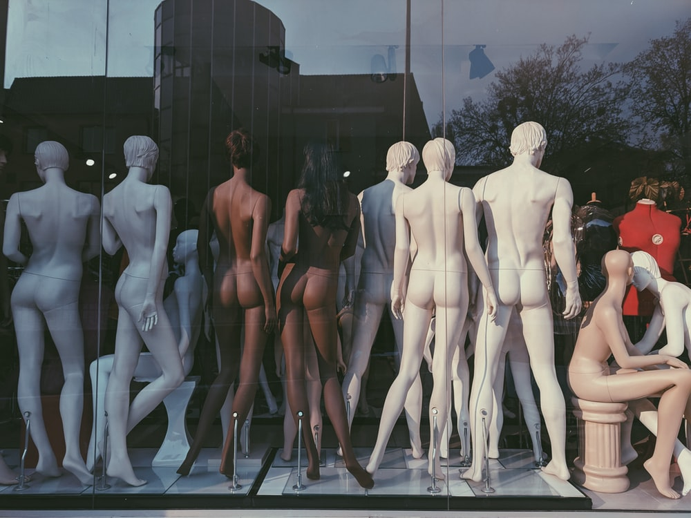manikins looking backward beside glass wall