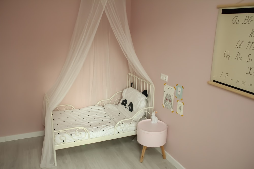 toddler's bed with mesh canopy