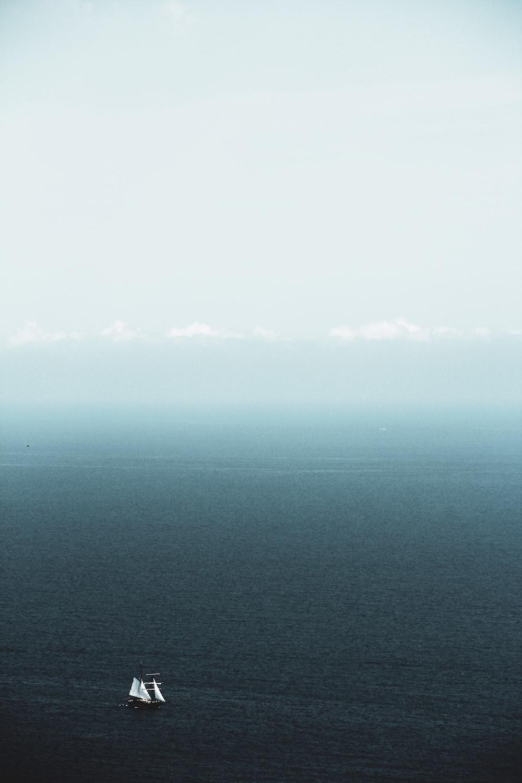 white sailboats on calm sea
