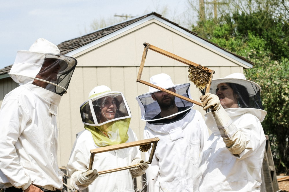 four people in anti-bee bite suit holding honeycomb during daylight