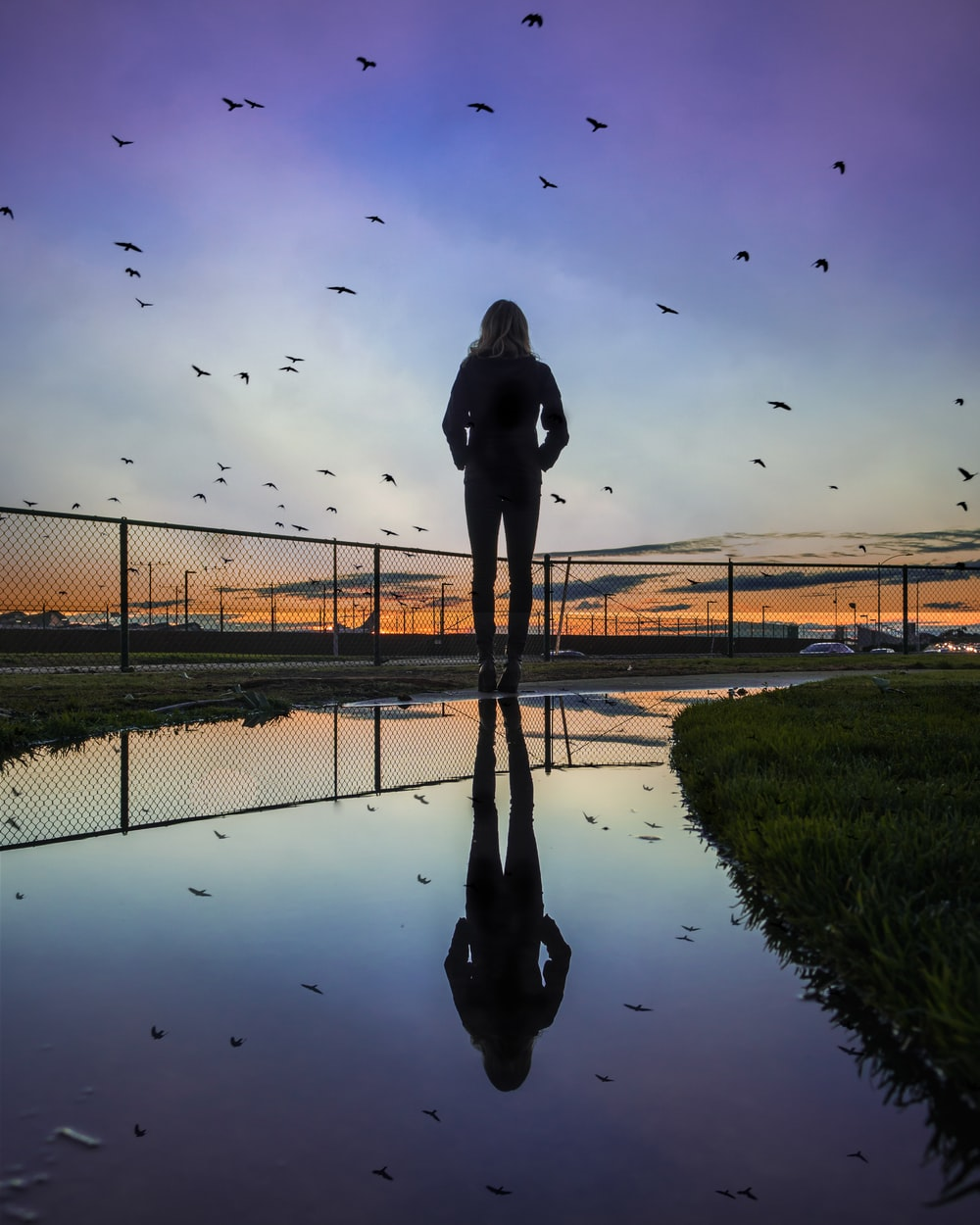 woman standing at the field near fence during golden hour