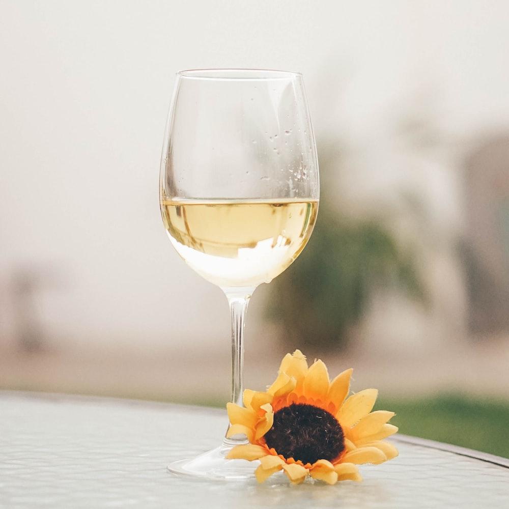 wine glass and sunflower