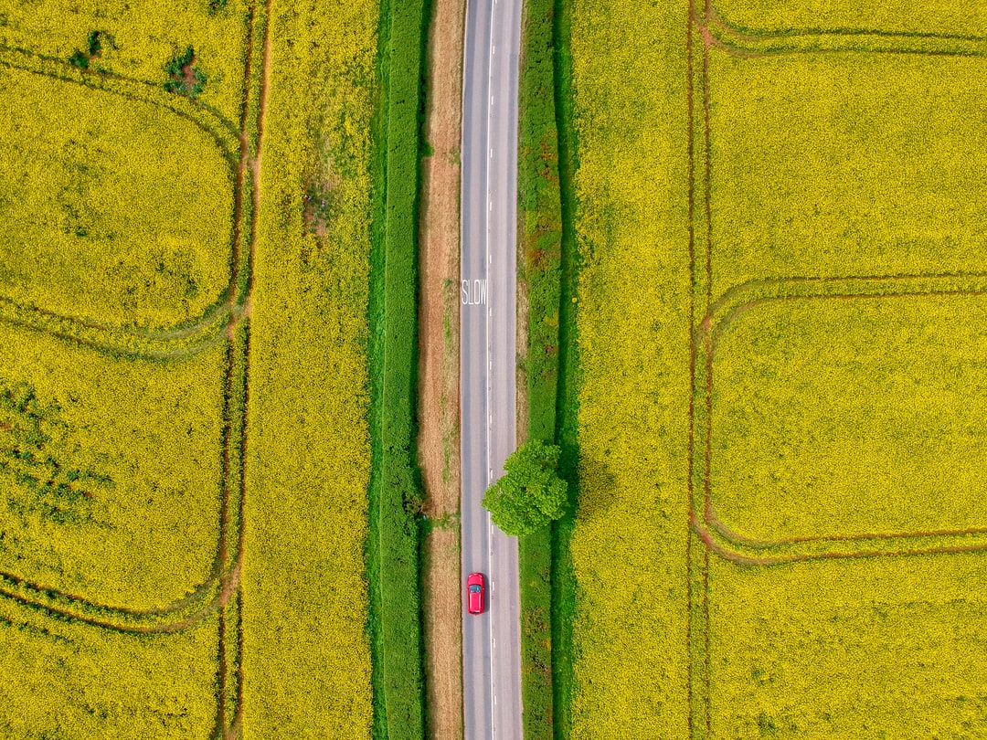 Overhead drone photograph of yellow fields, green hedges and a red car in Devon, UK