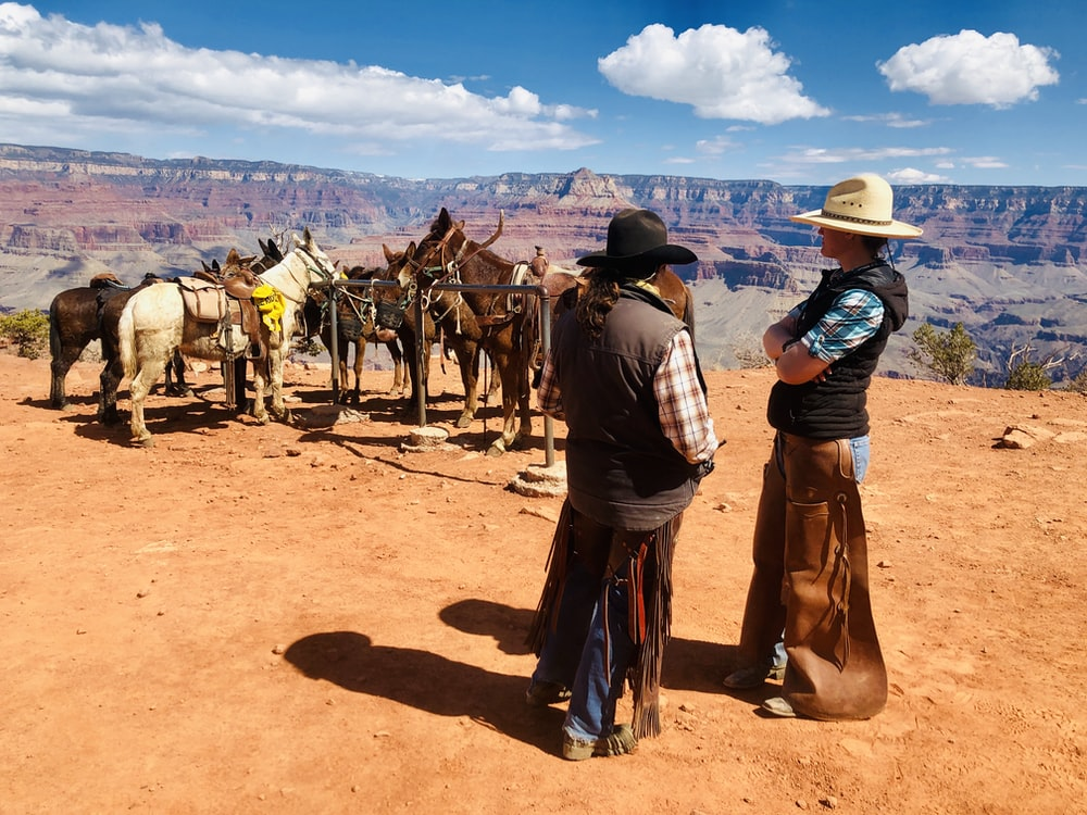 two man standing near horses