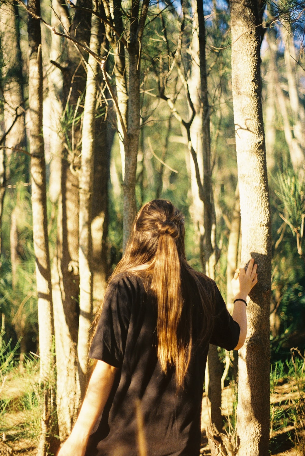 person standing near trees