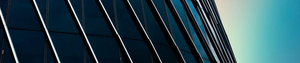 DigitalBits header image