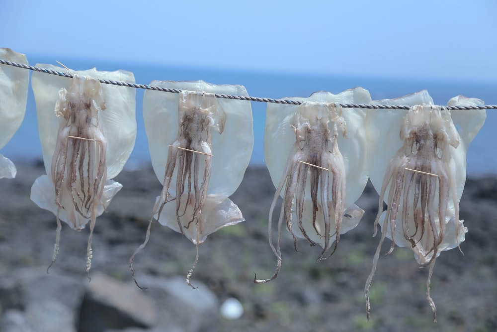 selective focus photography of sea foods hang on gray rope