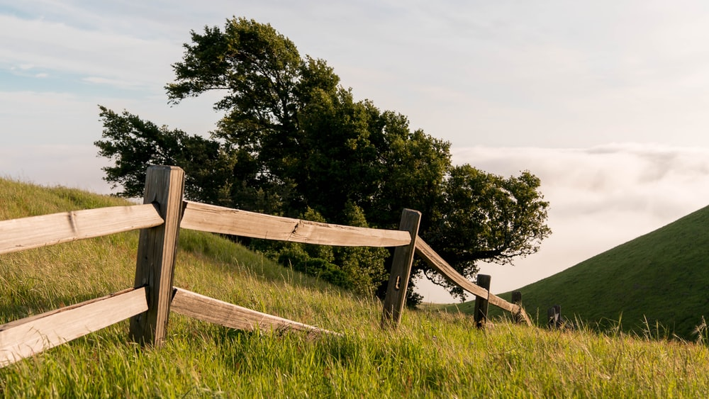brown wooden fence in a green field during daytime