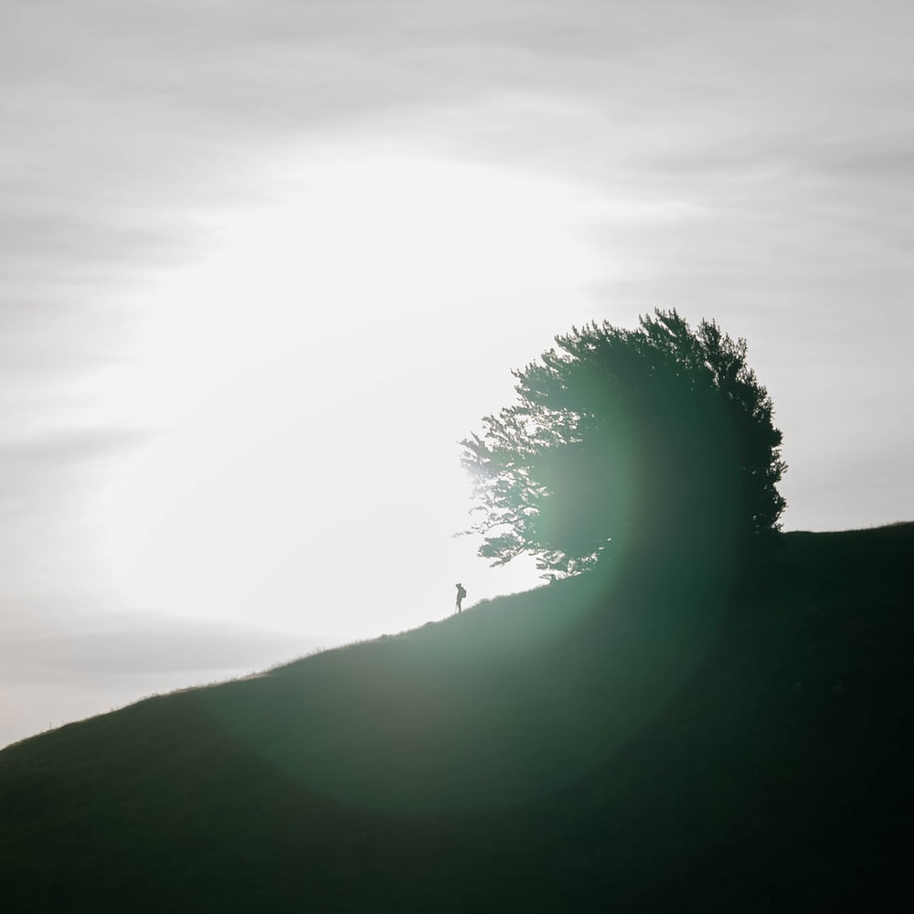 person standing on hill