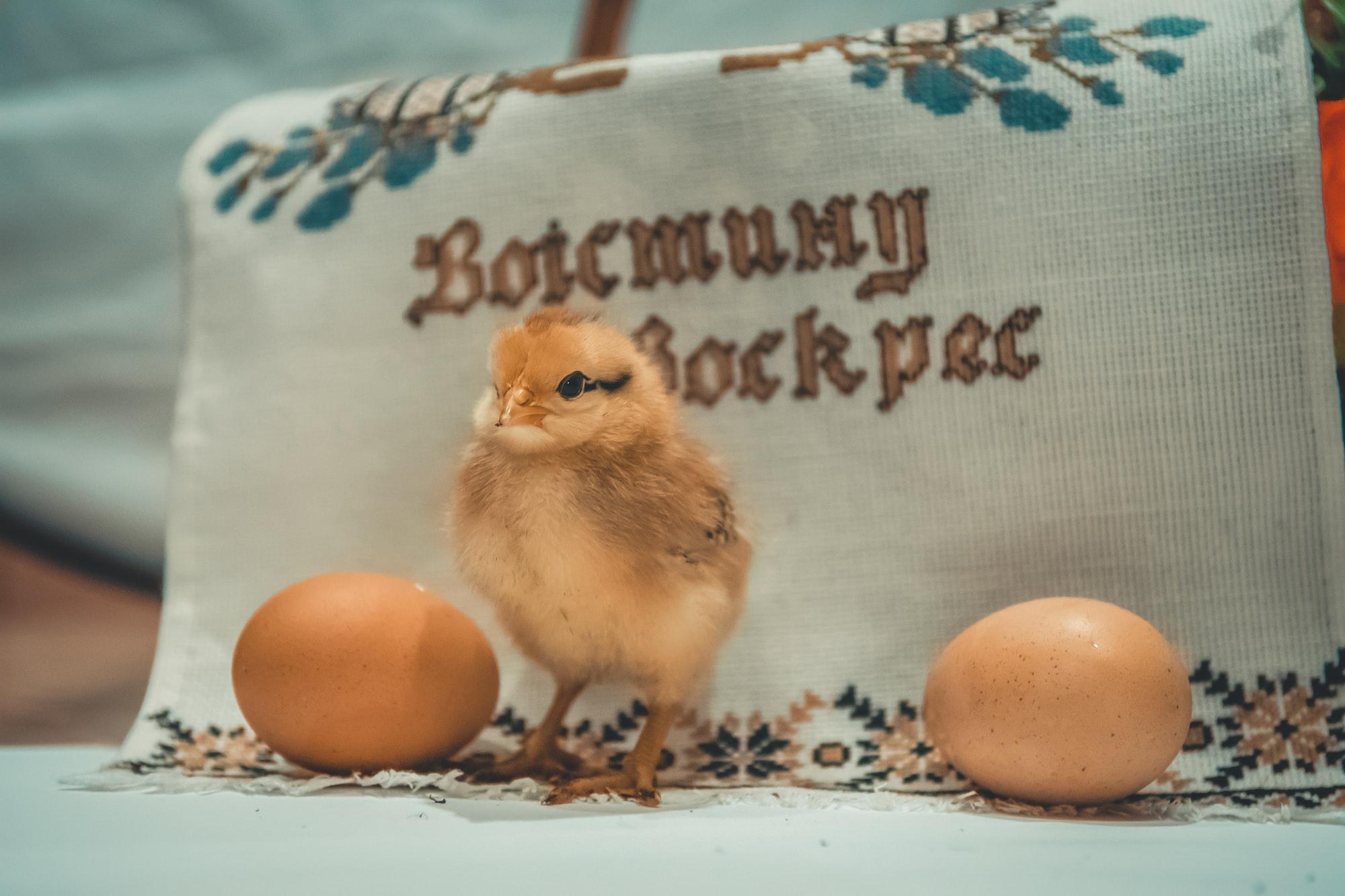 Con dos huevos,  ¿estamos bien?