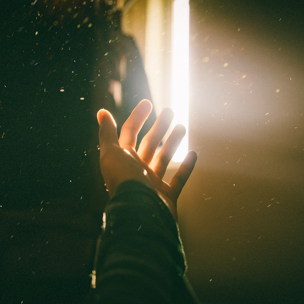 left human palm close-up photography