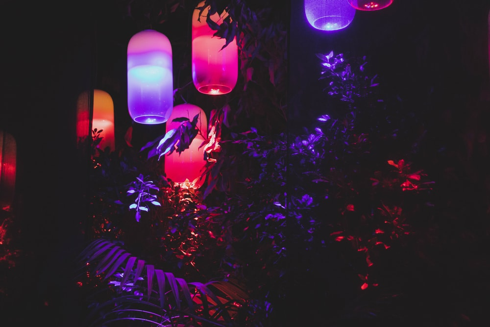 assorted-color lanterns turned-on during nighttime