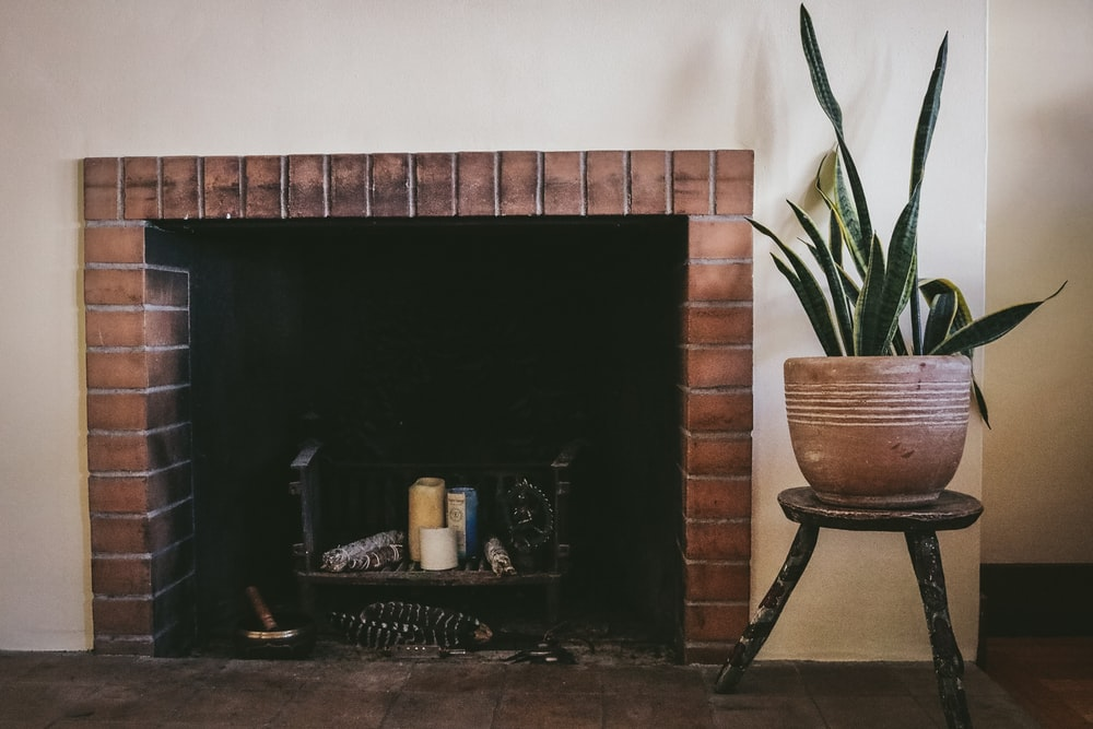 potted plant beside fireplace