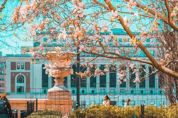 Perbedaan Tsinghua dan Peking University