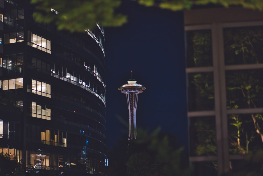 photography of Space Needle during nighttime