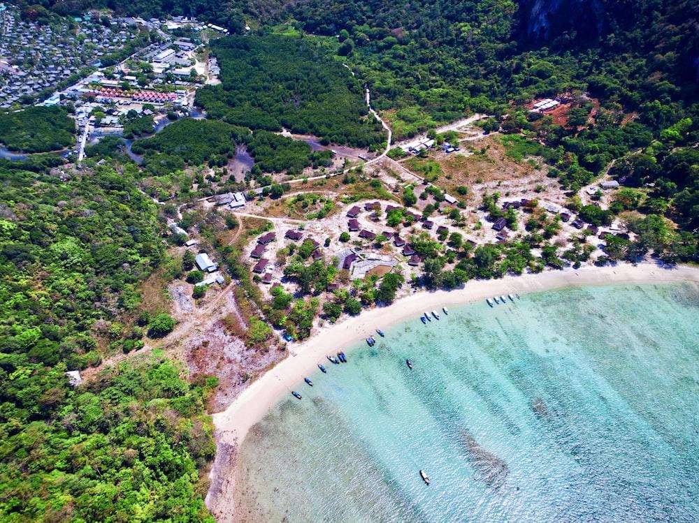 aerial view photo of beach
